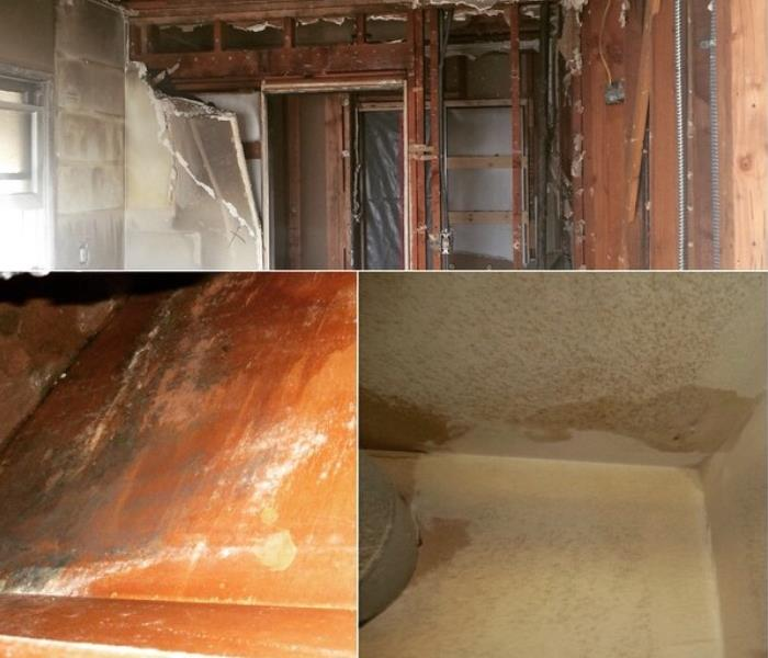 Water Damage in Los Angeles CA After