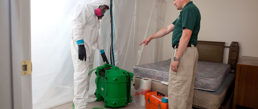 Cerritos, CA mold removal process